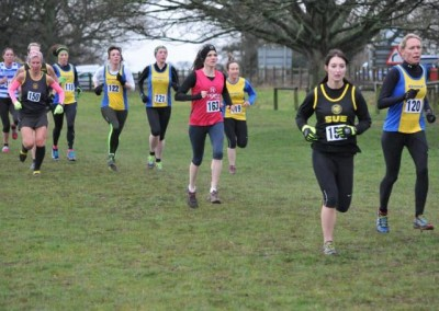 Humberside Cross Country Championships , Beverley Westwood Saturday 4th January 2014